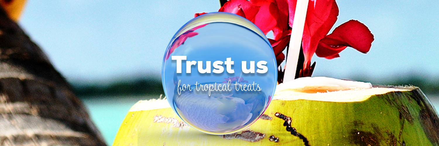 trust-tropical-cocnut